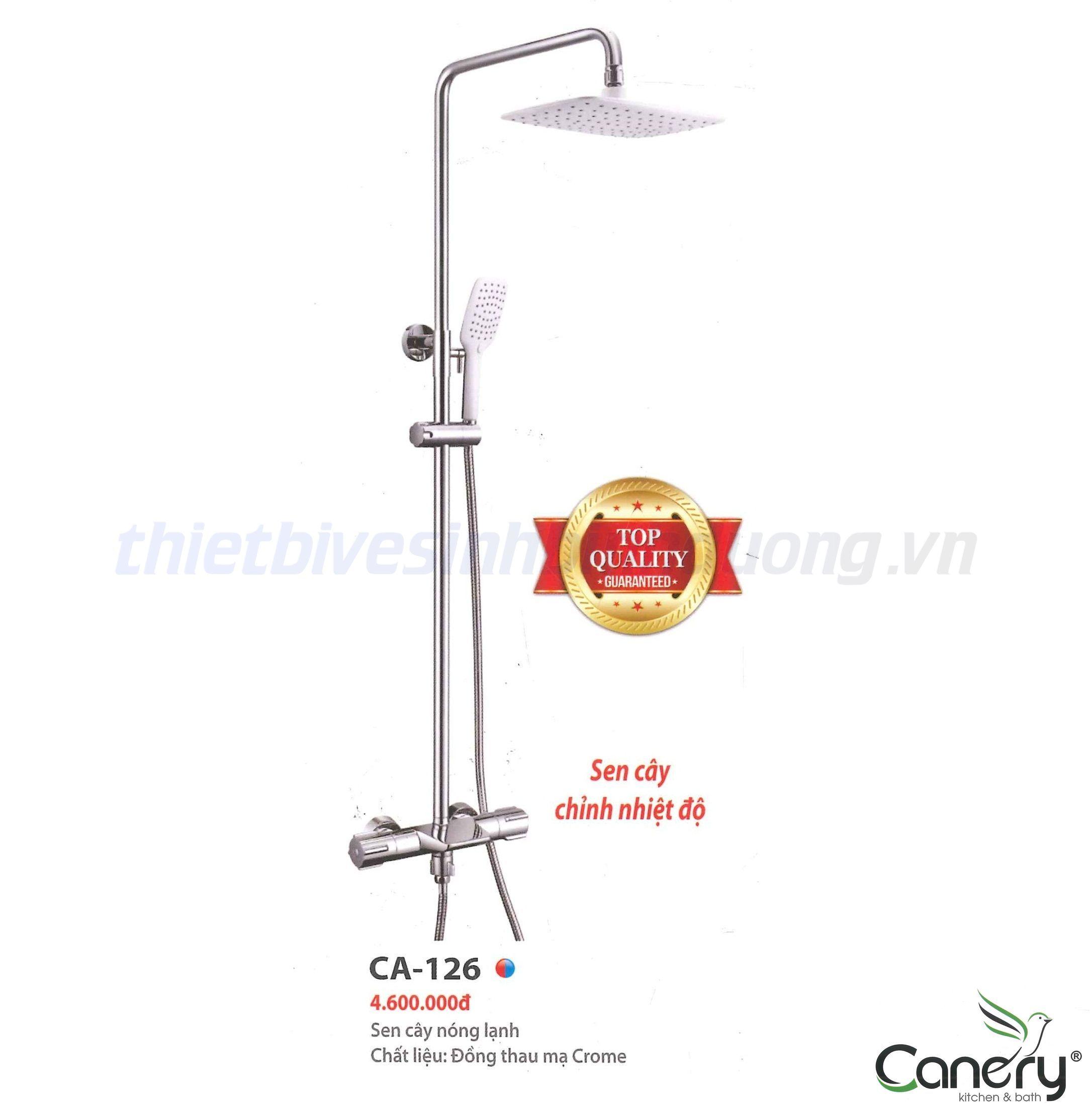 sen-cay-nong-lanh-canary-ca-126