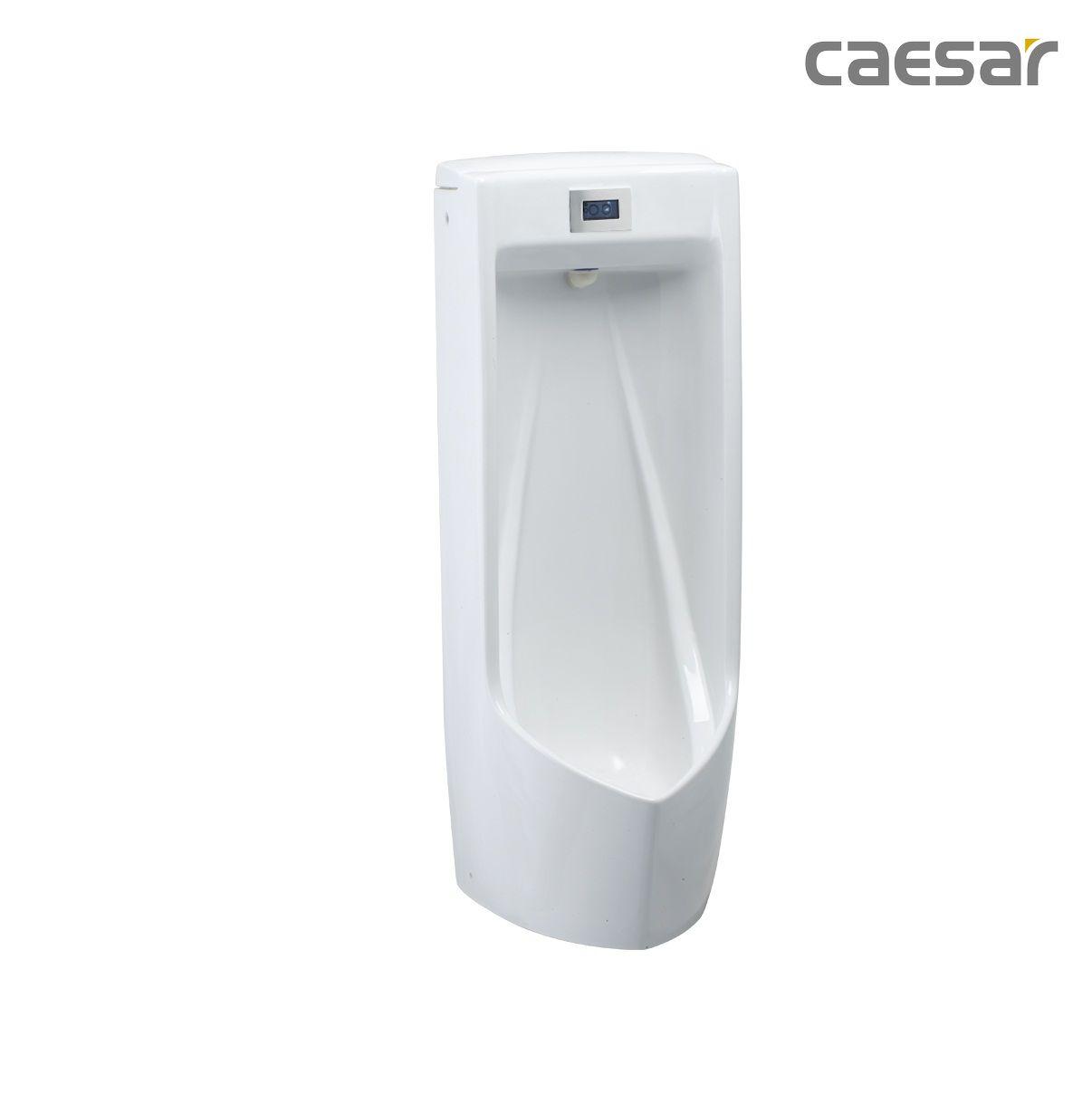 bon-tieu-caesar-ua0284