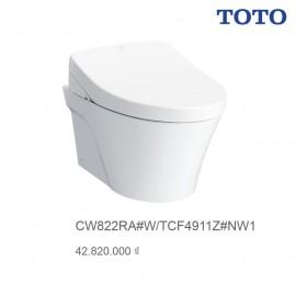 bon-cau-toto-cw822ra-tfc4911z
