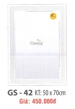 guong-soi-cao-cap-canary-gs-42