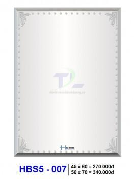 guong-soi-phong-tam-hobig-hbs5-007