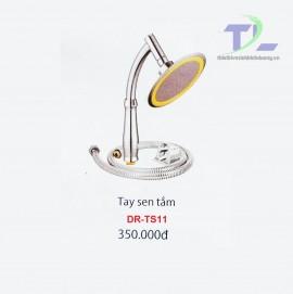 sen-tam-cam-tay-dr-ts11